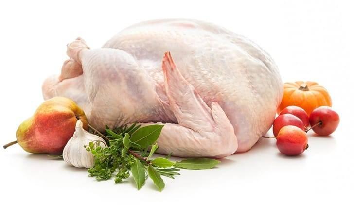 Мясо индюка польза и вред