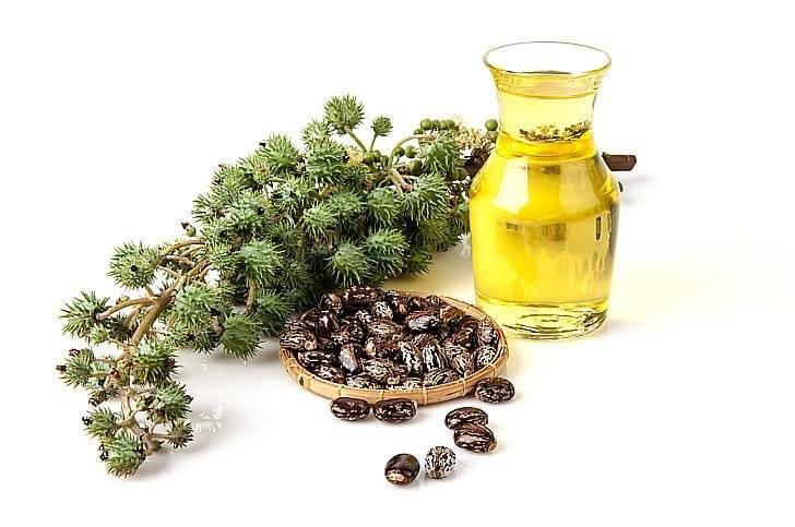 Касторовое масло – 15 полезных свойств и лечебное применение
