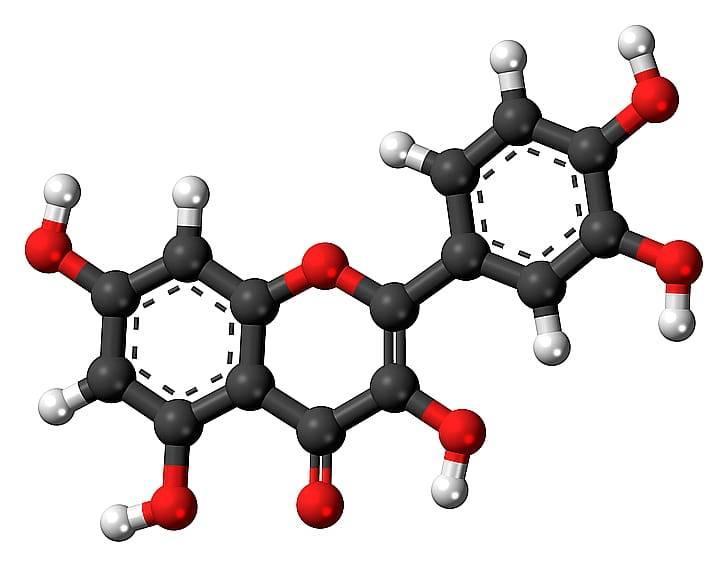Что такое кверцетин, чем полезен, содержание в продуктах, применение и дозировка