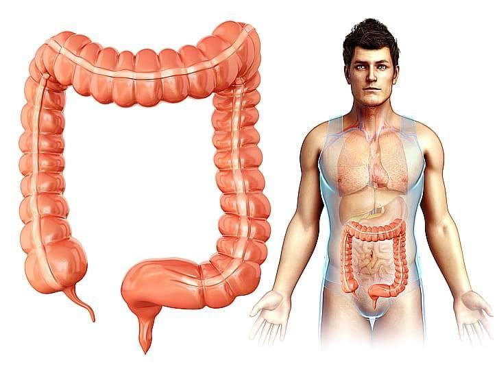 20 симптомов синдрома дырявой кишки и 15 лечебных процедур